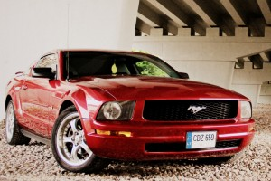 006 - Ford Mustang 2005 (LT)