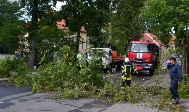 """Nuvirtusį medį supjaustyti ir patraukti ėmėsi ugniagesiai ir UAB """"Šilutės komunalininkas"""" darbininkai."""