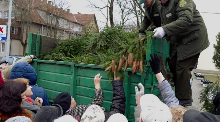 Jau penktus metus prieš Kalėdas Šilutės miškų urėdijos miškininkai didesnėse gyvenvietėse dovanoja eglių šakų.
