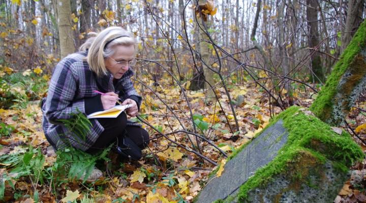 Senose krašto kapinaitėse Onutė Miliauskienė fiksuoja išlikusią antkapio epitafiją.