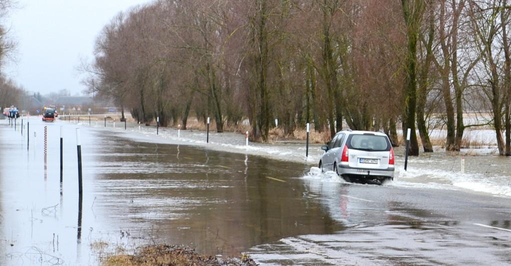 """Nedidukė mazdukė lengvai įveikė tokį """"potvynį""""..."""
