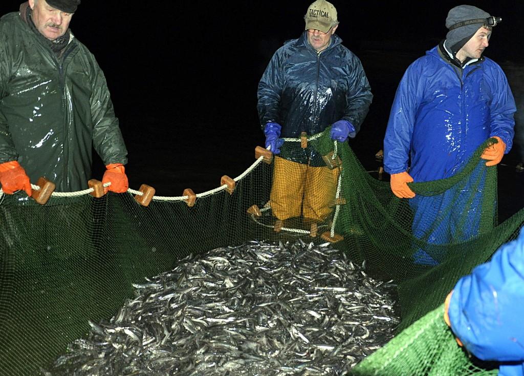 Mažėjantis laimikis žvejų nedžiugina.