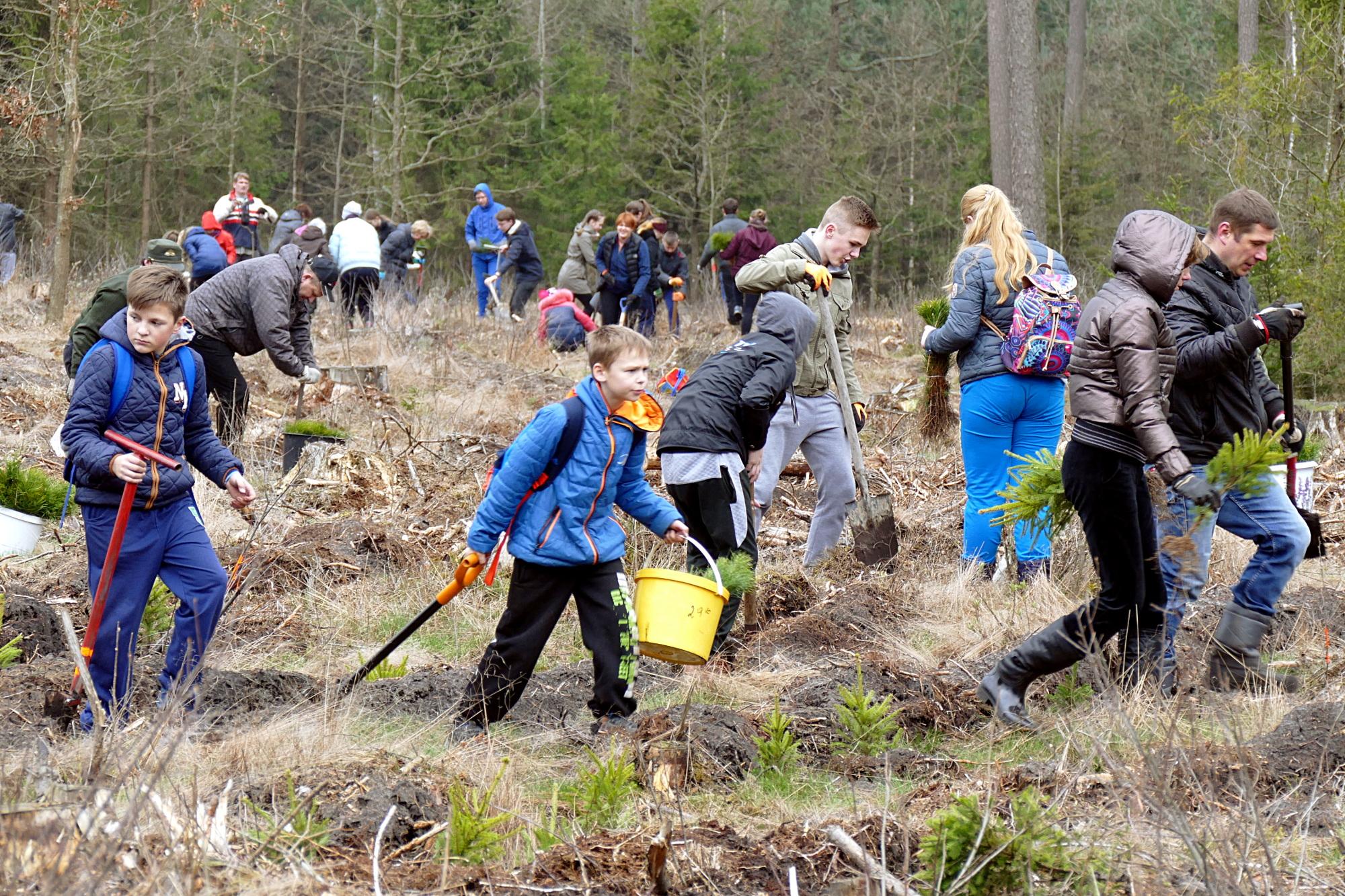 Nacionaliniame miškasodyje Ožkarčių miške dalyvavo per šimtą šilutiškių.
