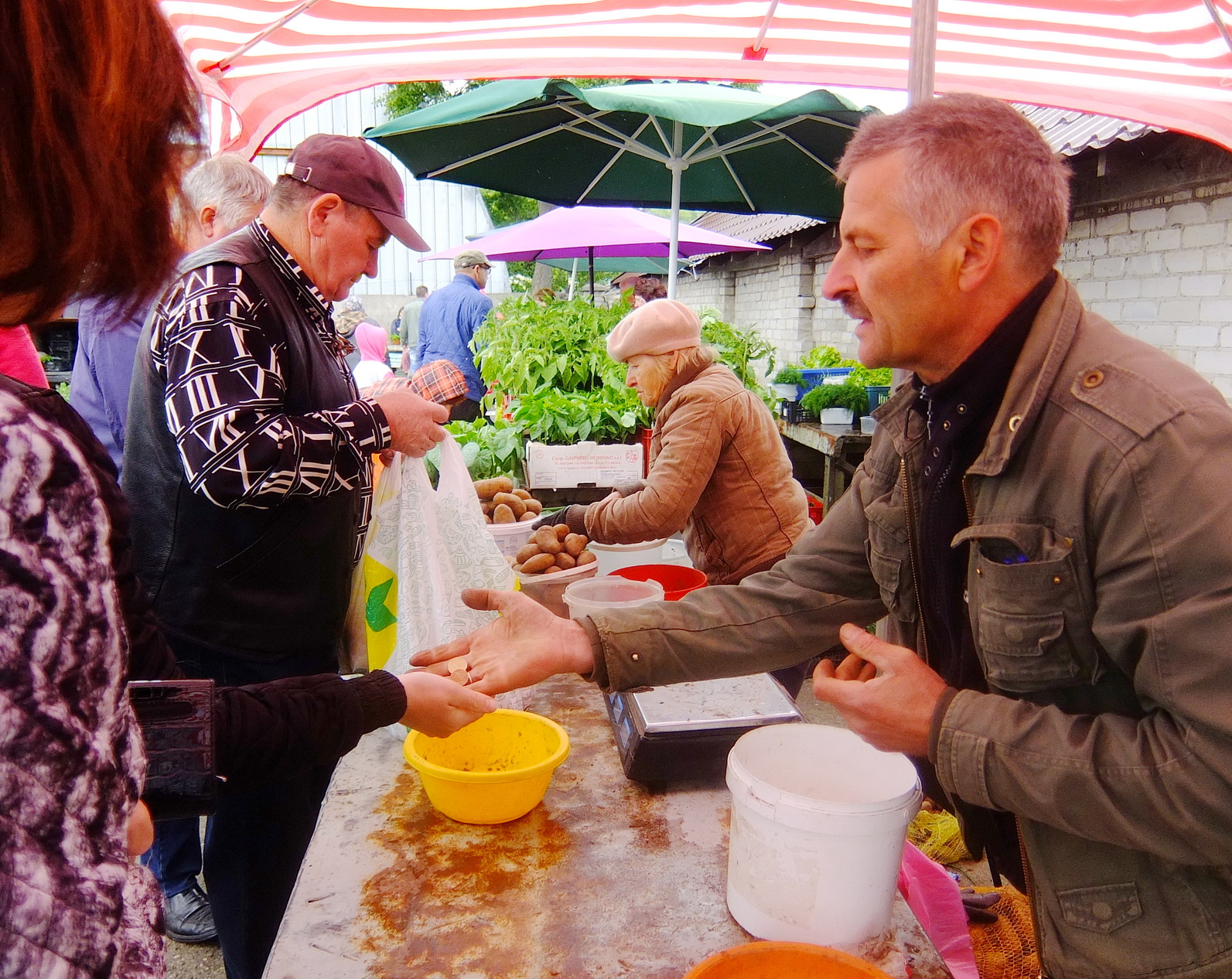 Artūras Stasiulis (dešinėje) motinai padeda ne tik prekiauti turguje, bet ir užauginti bulves ir kitas daržoves.