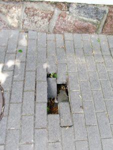grindinys.45.gyv