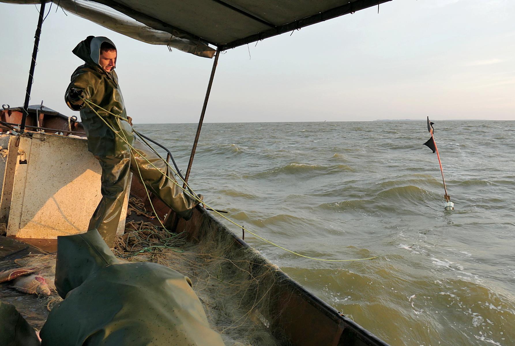 """Retai pasitaiko galimybė išplaukti į ne parodomąją ar pramoginę, o tikrą žvejybą su fotoaparatu rankose. Šįkart į savo žvejybinį botą, plaukusį patikrinti tinklų, sutiko priimti UAB """"Marių ežia"""" vadovas Arūnas Surdokas."""