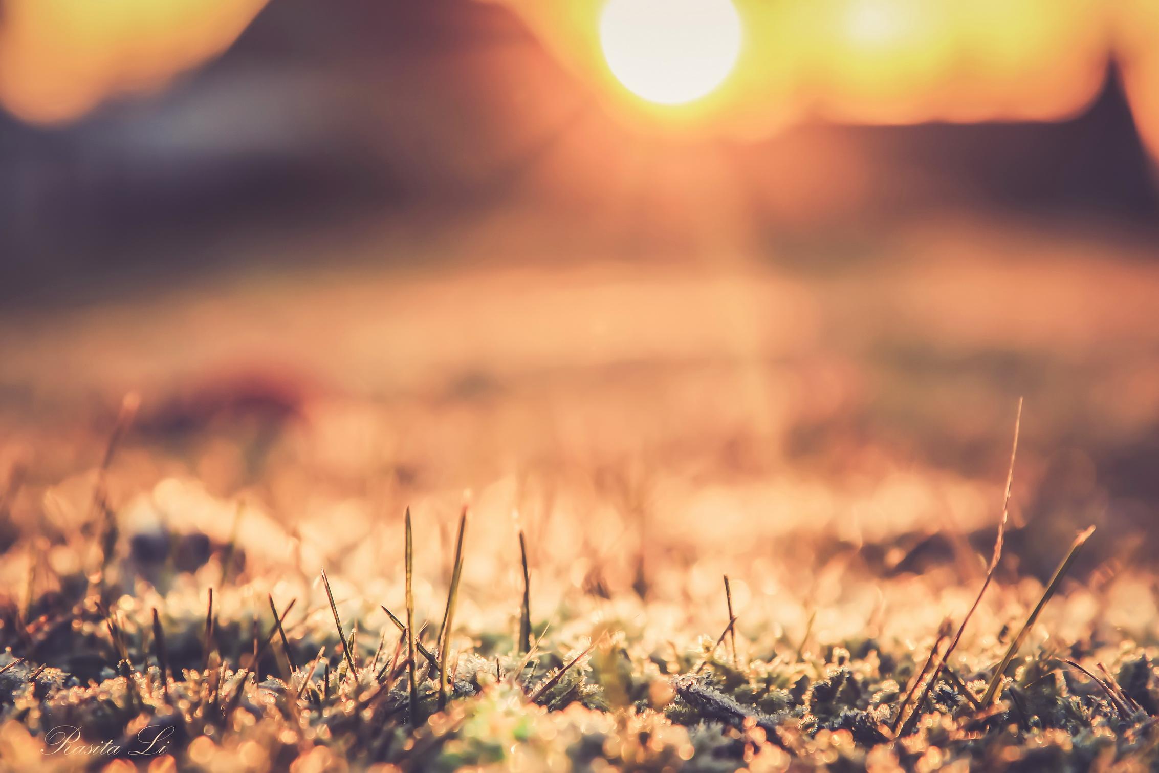 Duok pradžią bet kam ir tai nutiks. Duok pradžią saulės spinduliui arba gruodui. Tikėjimui arba abejonei. Laukimui arba atsisveikinimui. Duok pradžią...