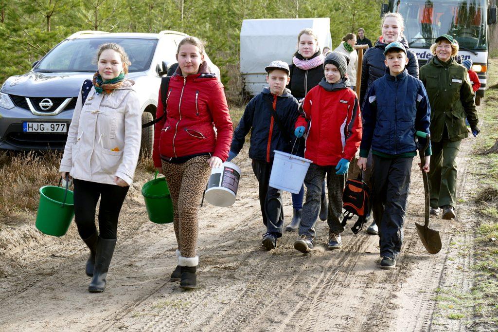 Moksleivius į Nacionalinę miško sodinimo šventę atvežė urėdijos pasamdytas autobusas.